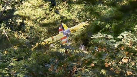 Двенадцать часов провисел надереве пилот разбившегося вГермании самолета