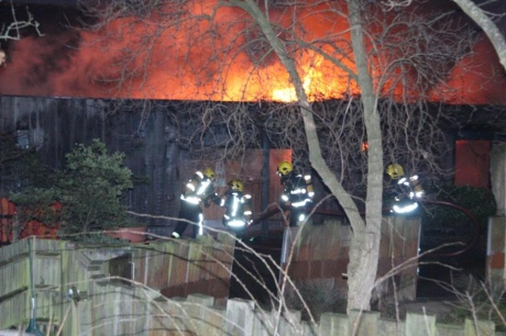 Узоопарку Лондона розгорілася велика пожежа: опубліковані фото і відео