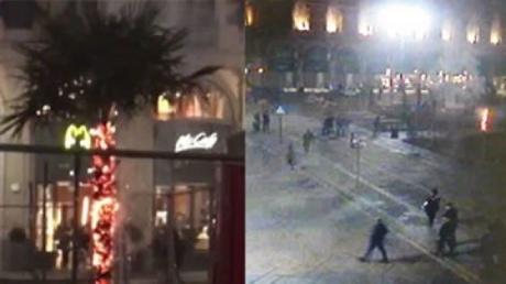 ВМилане протестующие подожгли посаженные наплощади Дуомо пальмы