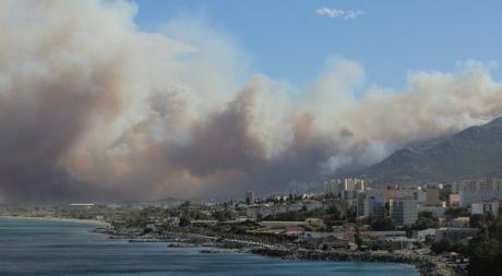 Курорти Франції охопили масштабні лісові пожежі
