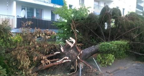 УПольщі через урагани загинуло 4 людини, ще30 поранені